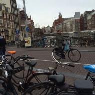 A typical Amsterdam street scene